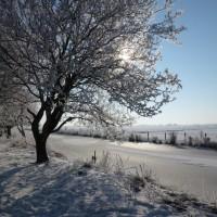 Winter zoals je het zelden ziet