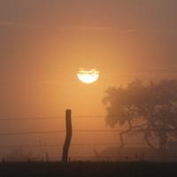 Mist bij zonsopgang