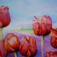 Rode tulpen met horizon