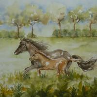 Rennende paardjes